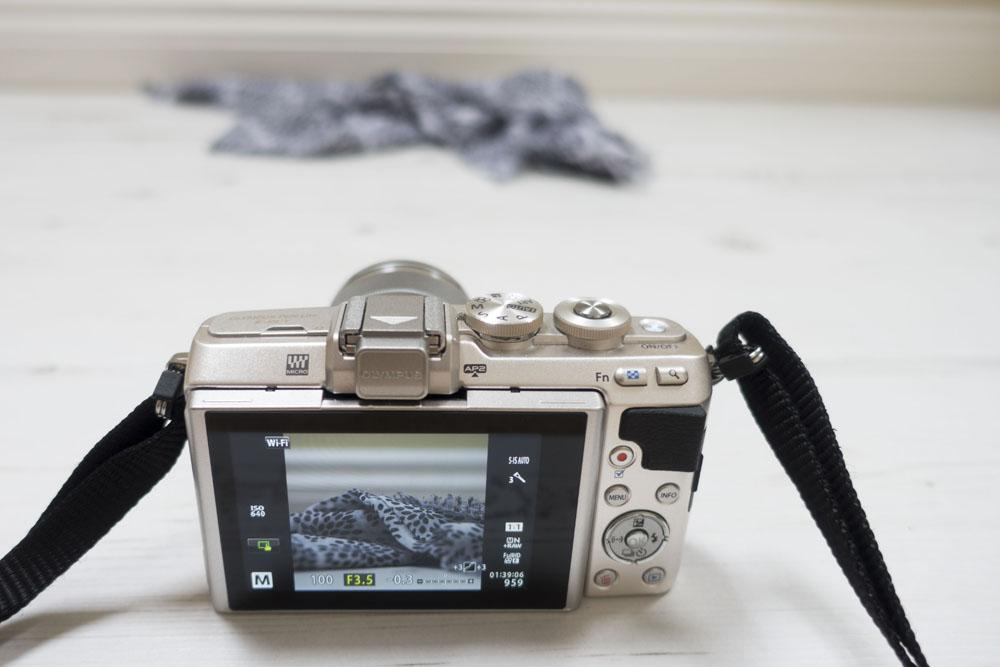 Everything-you-need-to-know-about-the-olympus pen-45mm-lens-10