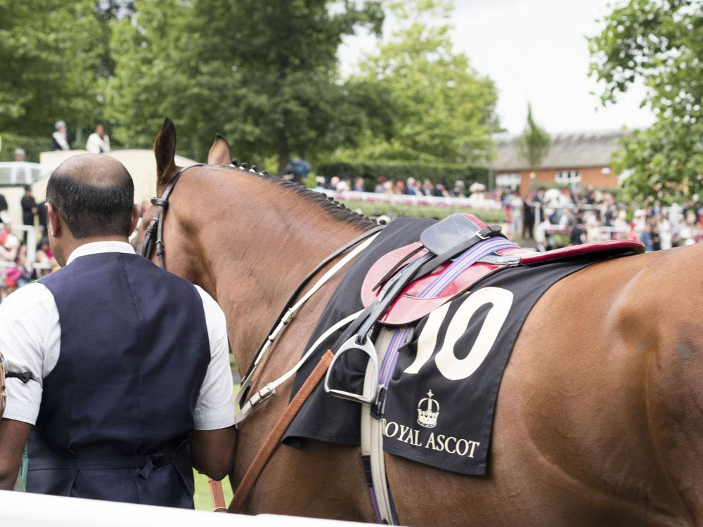 Royal Ascot Ladies Day with Appletiser
